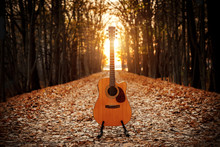 Acoustic Guitar In The Autumn ...