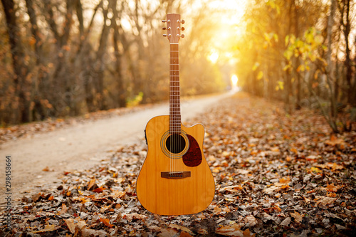 Acoustic guitar in the autumn forest. - 298458664