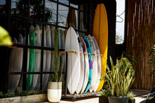 Surf Shop. Many Multi-colored ...
