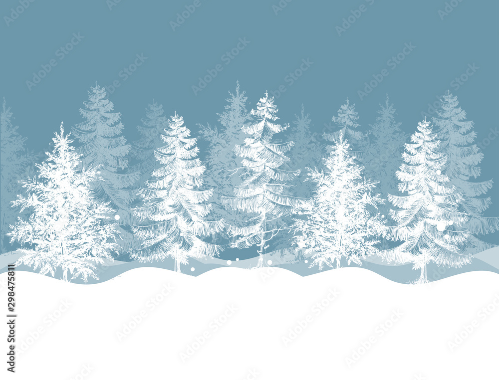 Fototapety, obrazy: Christmas winter background. Pine trees forest landscape