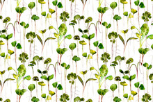 Microgreens Watercolor