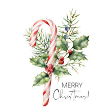 Watercolor Christmas Cane With Decor. Hand Painted Cane, Striped Lollipop, Fir Branch, Holly And Juniper Isolated On White Background. Sweet Illustration For Design, Print, Fabric Or Background.