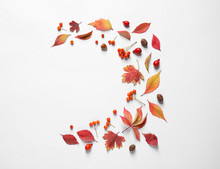 Beautiful Composition With Autumn Leaves On White Background, Flat Lay. Space For Text
