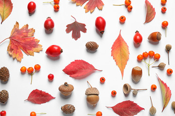 Beautiful composition with autumn leaves on white background, flat lay