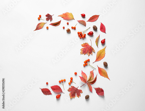 Poster Fleur Beautiful composition with autumn leaves on white background, flat lay. Space for text