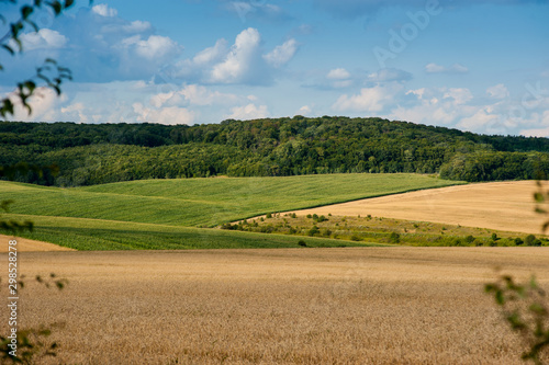 Spoed Foto op Canvas Blauw beautiful landscape of wheat field, ears and hills