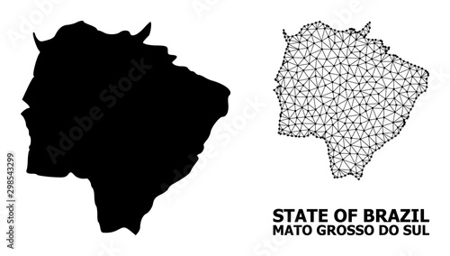 Fotografija  Solid and Wire Frame Map of Mato Grosso Do Sul State
