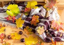 Herbstlicher Hintergrund Mit B...