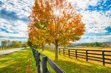 Beautiful Autumn Country Lands...