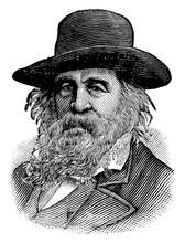 Walt Whitman, Vintage Illustration