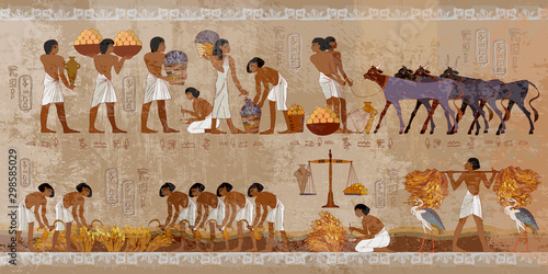Fototapeta Life in ancient Egypt, frescoes. Egyptians history art. Agriculture, workmanship, fishery, farm. Hieroglyphic carvings on exterior walls of an old temple obraz