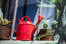 Arrosoir En Métal Rouge Dans Le Jardin