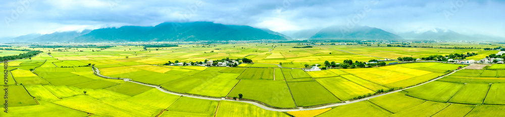 Fototapety, obrazy: Aerial view of Beautiful Rice Fields in taitung . Taiwan.