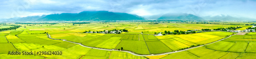 Aerial view of Beautiful Rice Fields in taitung . Taiwan.