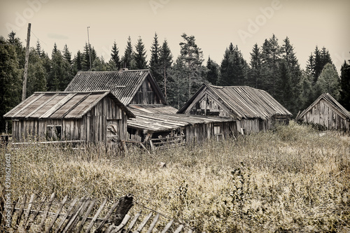 wooden houses in a russian village in summer Tableau sur Toile
