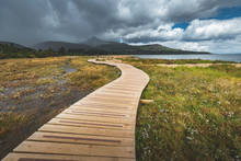 Wooden Walking Way At Coastline Nothern Ireland. Wood Footpath Along Coast, Calm Ocean Bay, Green Forest Climbs And Sky With Stormy Clouds. Wonderful Seaside Place And Tourist Walkway
