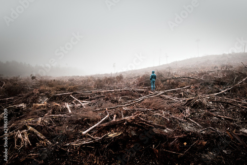 Fotografia Person stands in the middle of a dead forest surrounded by dense fog, lumbered b