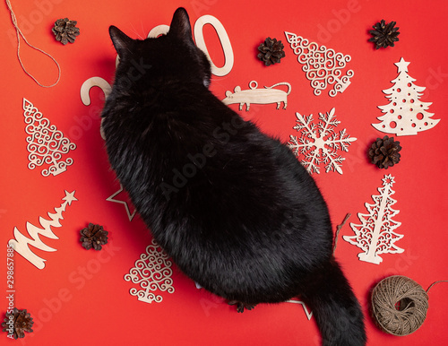Funny top view composition with curious black cat sitting atop festive christmas red mockup Wallpaper Mural