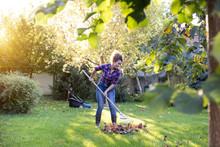 Woman Raking Leaves On Lawn