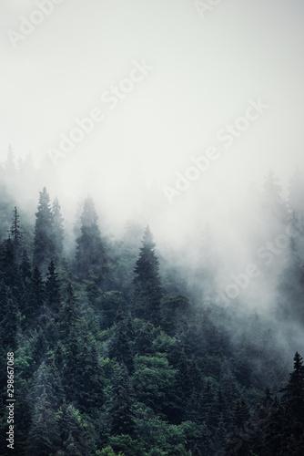 mglisty-krajobraz-gorski