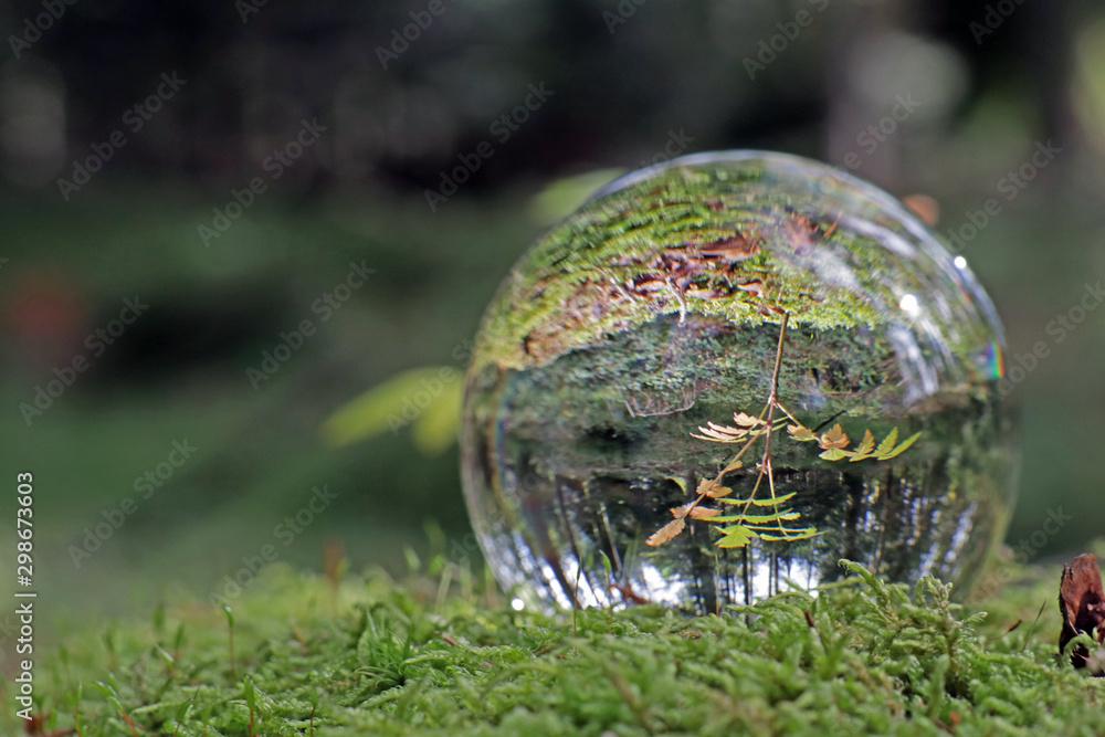Fototapety, obrazy: wald in kristallkugel, alpen, schweiz