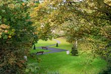 Zig-zag Road In A Park In York