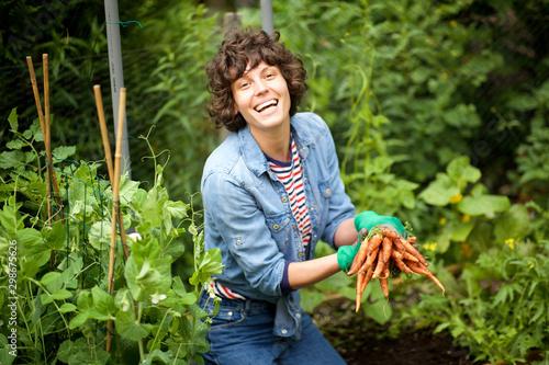 Obraz happy gardener harvesting carrots from garden - fototapety do salonu