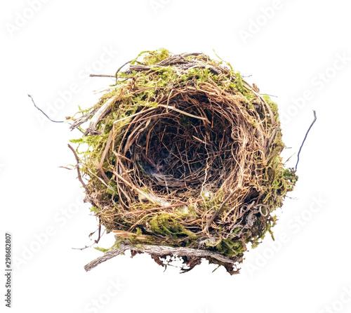Fototapeta empty bird's nest on a white background obraz