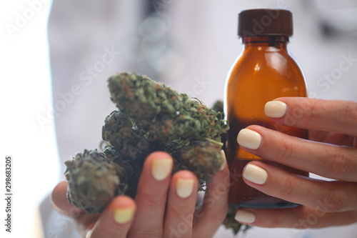 Valokuvatapetti doctor hand hold and offer to patient medical marijuana and oil