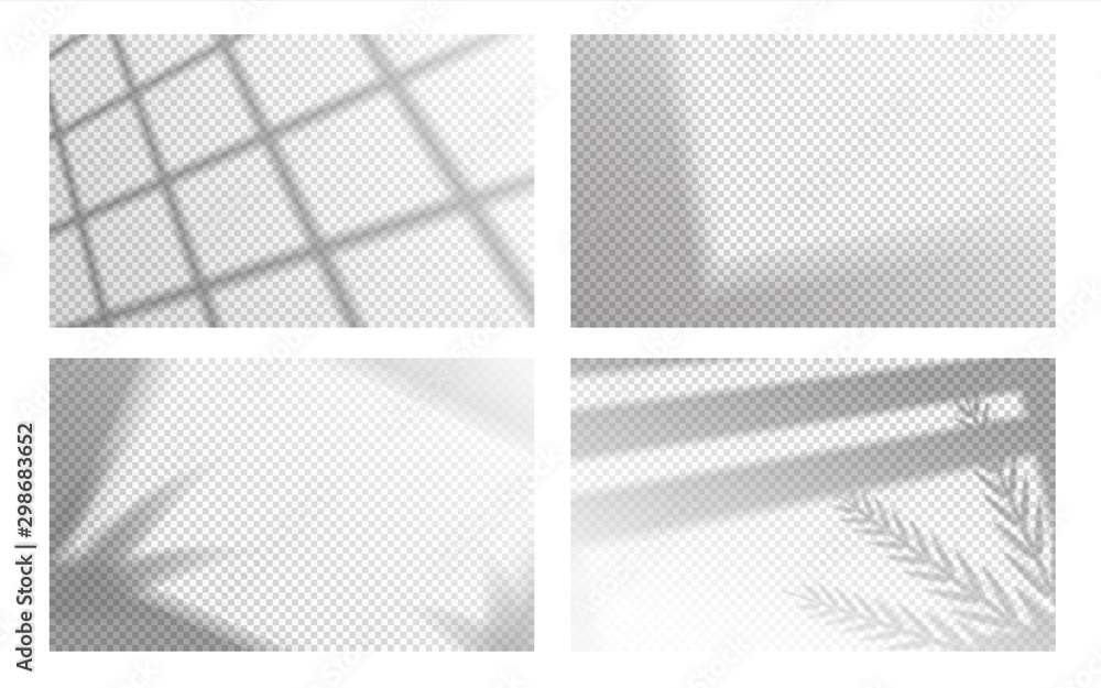 Fototapeta Realistic shadow overlay. Window light with shadows of tropical leaves on transparent background. Vector illustration overlay effect mockup calm contemporary scene wall with blurry outlines plant
