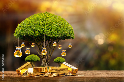 Fototapeta Stacking coins and many gold bar money bag of tree with growing put on the wood on the morning sunlight in public park, Saving money and loan for business investment concept. obraz