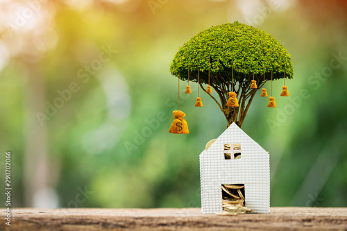 Home model with stack gold coin with growing as money bag of tree on the top interest value in the public park, Saving for buy house or loan for business investment real estate concept Wallpaper Mural