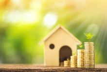 Home Model And Stack Coin With Working Capital Management And Plant Growing With Savings Money Put On The Wood In The Public Park, Business Investment And Loan For Real Estate Or Buy House Concept.