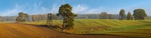 Panorama Of The Autumn Field. ...