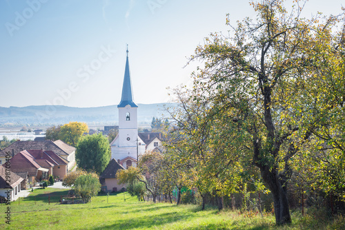 In de dag Oost Europa Church and tree with autumn leaf colors in a village in Transylvania, Romania
