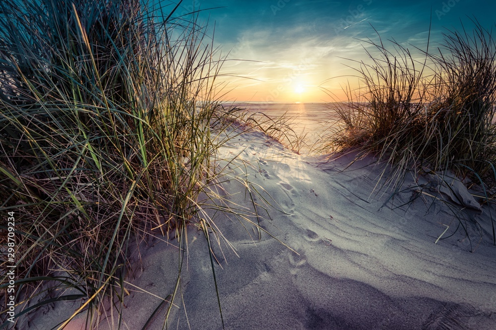 Fototapety, obrazy: Beautiful scenery of grass grown in the sand on the seashore with sunset in the background