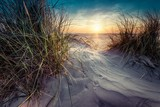 Fototapeta Fototapety z naturą - Beautiful scenery of grass grown in the sand on the seashore with sunset in the background