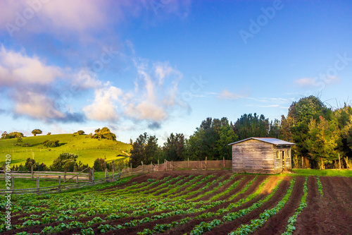 Photo  Chepu, Chiloe Island, Chile - Sunset Hour over the Organic Eco Farm in Chepu