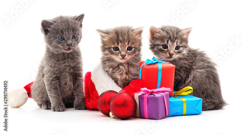 Three red kittens in the hat Santa. Canvas Print