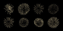 Vector Set Of Eight Fireworks Isolated On Black Background.