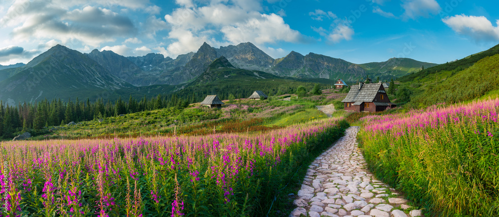 Fototapeta mountain landscape, Tatra mountains panorama, Poland colorful flowers and cottages in Gasienicowa valley (Hala Gasienicowa), summer