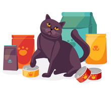 Cat In Pet Store With Packages And Canned Food For Pets. British Scottish Cat With Its Feed. Vector Illustration