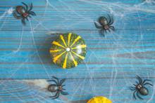 Small Decorative Pumpkins Lie ...