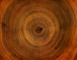 Leinwanddruck Bild Old wooden tree cut surface. Detailed warm dark brown and orange tones of a felled tree trunk or stump. Rough organic texture of tree rings with close up of end grain.
