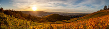 Autumn Sunset View Of Stuttgart Sykline Overlooking The Colorful Vineyards. The Iconic Fernsehturm As Well As The Soccer Stadium Are Visible. The Sun Is About Ot Set Over The Neckar Valley.