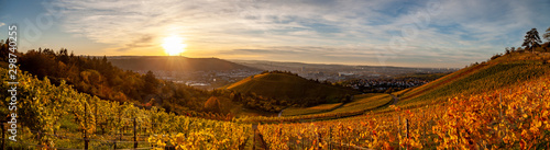 Foto op Aluminium Wijngaard Autumn sunset view of Stuttgart sykline overlooking the colorful vineyards. The iconic Fernsehturm as well as the soccer stadium are visible. The sun is about ot set over the Neckar Valley.