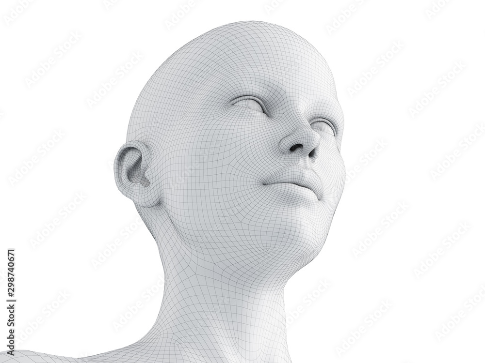 Fototapeta 3d rendered medically accurate illustration of a female wireframe head