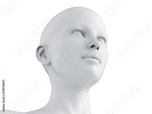 Fotografia, Obraz 3d rendered medically accurate illustration of a female wireframe head