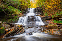 Autumn Forest Waterfall Flowin...