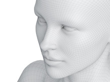3d Rendered Medically Accurate Illustration Of A Female Wireframe Face